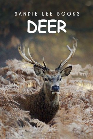 Deer - Sandie Lee Books (children's animal books age 4-6, wildlife photography, animal books nonfiction)