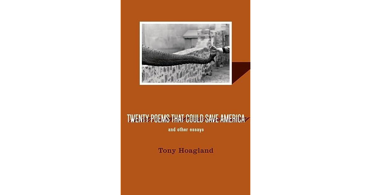 poetry analysis america tony hoagland