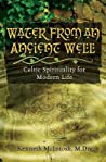 Water from an Ancient Well: Celtic Spirituality for Modern Life ebook download free