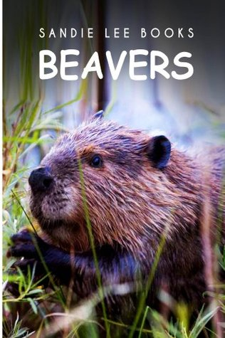 Beavers - Sandie Lee Books (children's animal books age 4-6, wildlife photography, animal books nonfiction)
