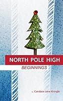 North Pole High: Beginnings