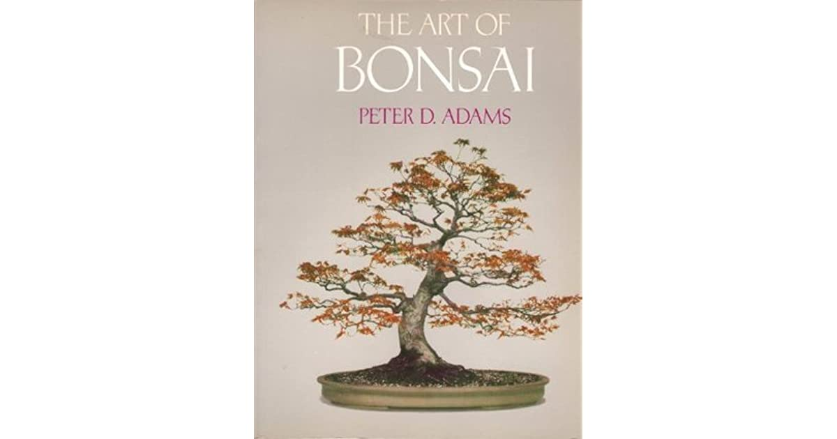 Bonsai: A Novel