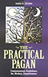 Practical Pagan: Common Sense Guidelines for Modern Practitioners