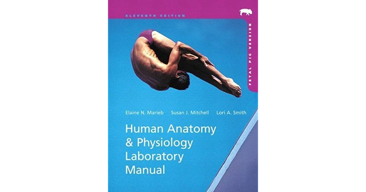 Human Anatomy Physiology Laboratory Manual Fetal Pig Version By