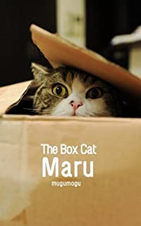 The Box Cat Maru.