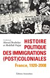 Histoire politique des immigrations (post)coloniales by Ahmed Boubeker