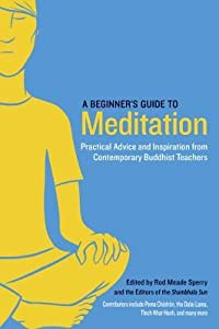 A Beginner's Guide to Meditation: Practical Advice and Inspiration from Contemporary Buddhist Teachers