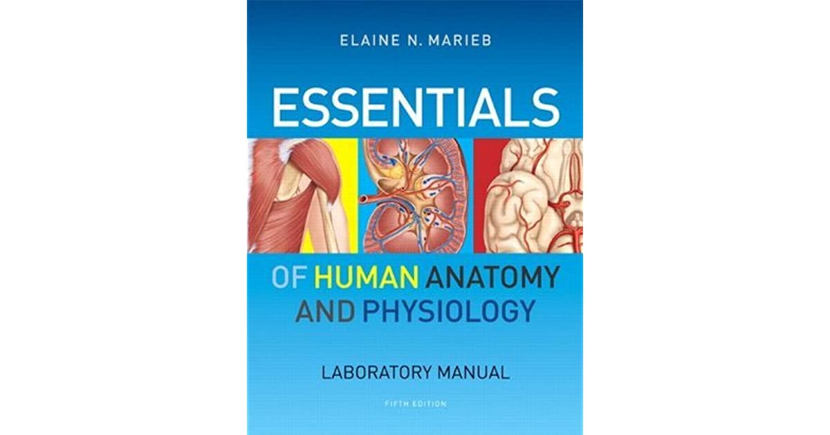 Essentials of Human Anatomy & Physiology Laboratory Manual by Elaine ...