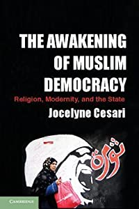 The Awakening of Muslim Democracy: Religion, Modernity, and the State