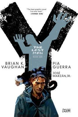 Y: The Last Man - Book One