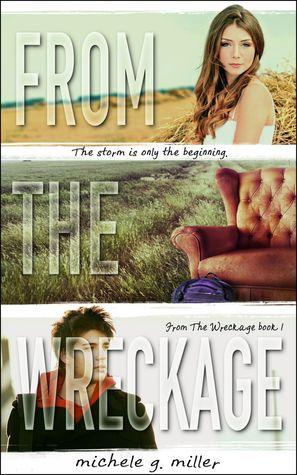 From the Wreckage (From the Wreckage, #1)