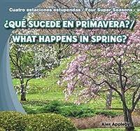 Que Sucede En Primavera? / What Happens in Spring?