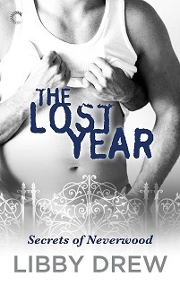 The Lost Year (Secrets of Neverwood, #3)