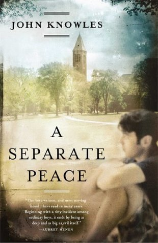 a separate peace theme essay