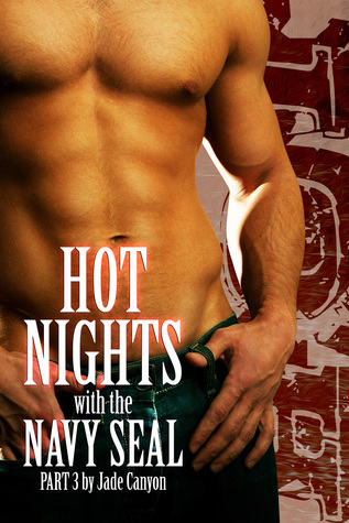 Hot Nights with the Navy SEAL 3