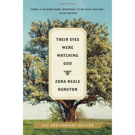 the concept of idea in the novel their eyes were watching god by zora neale hurston