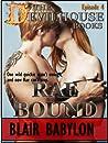 Rae Bound (The Devilhouse #4)