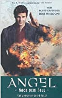 Angel: Nach dem Fall, Showdown in der Hölle (Angel: After the Fall #3)