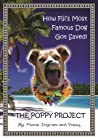The Poppy Project: How Fiji's Most Famous Dog Got Saved!