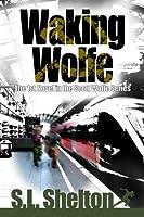 Waking Wolfe (Scott Wolfe, #1)