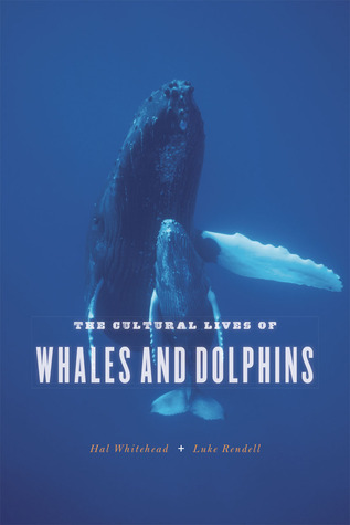 The Cultural Lives of Whales and Dolphins