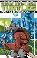 Teenage Mutant Ninja Turtles, Vol. 2: Enemies Old, Enemies New
