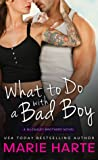 What to Do with a Bad Boy (The McCauley Brothers, #4) audiobook download free