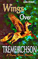 Wings Over Tremeirchson
