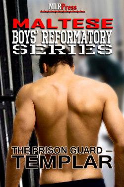 Templar - The Prison Guard