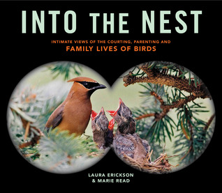 Into the Nest: Intimate Views of the Courting, Parenting, and Family Lives of Familiar Birds