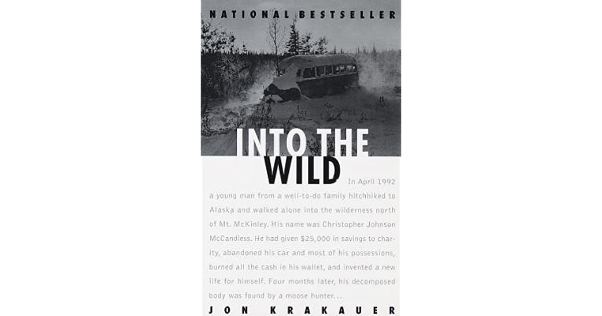into the wild essay example
