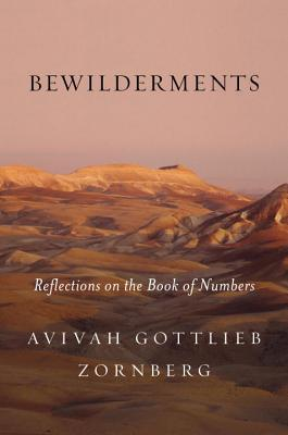 Bewilderments Reflections on the Book of Numbers
