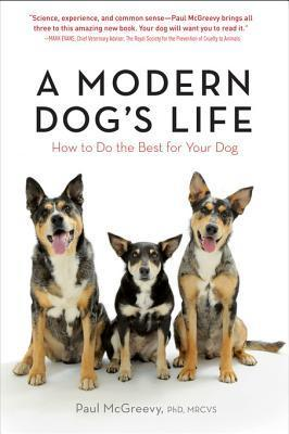 A Modern Dog's Life How to Do the Best for Your Dog