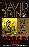 Brightness Reef  (Uplift Storm Trilogy #1)
