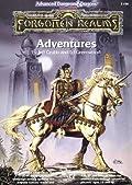 Forgotten Realms: Adventures
