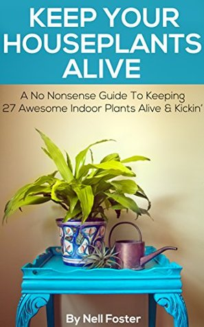 Keep Your Houseplants Alive: A No Nonsense Guide To Keeping