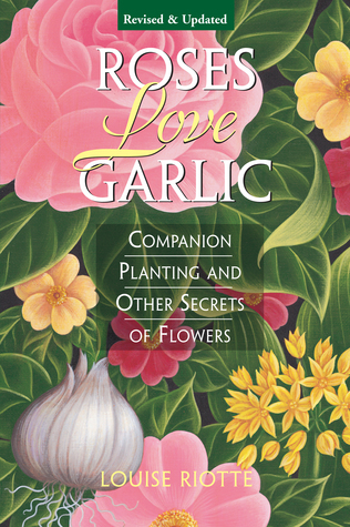 Roses-Love-Garlic-Companion-Planting-and-Other-Secrets-of-Flowers