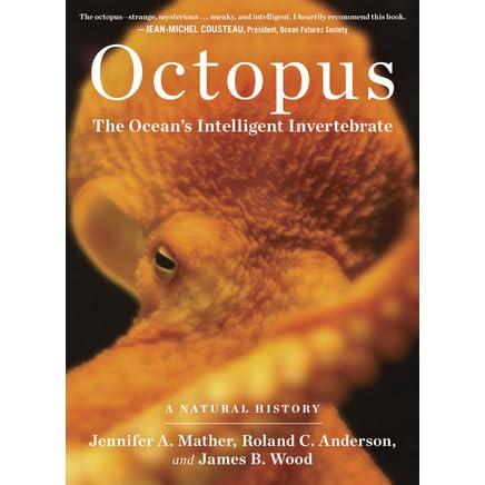Octopus The Ocean S Intelligent Invertebrate By Jennifer