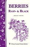Berries, Rasp-  Black: Storey Country Wisdom Bulletin A-33