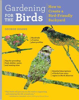 Gardening for the Birds: How to Create a Bird-Friendly Garden