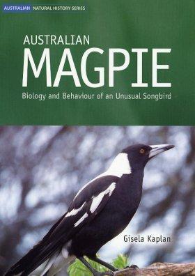 Australian Magpie [op]: Biology and Behaviour of an Unusual Songbird