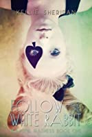 Follow the White Rabbit (Beautiful Madness #1)