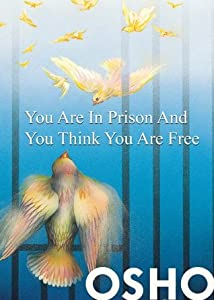 You Are in Prison and You Think You Are Free
