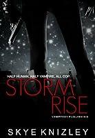 Stormrise (Storm Chronicles, #1)