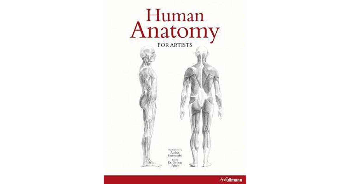 Human Anatomy For Artists By Gy Rgy Feh R