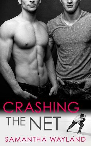 Crashing the Net (Crashing, #1)