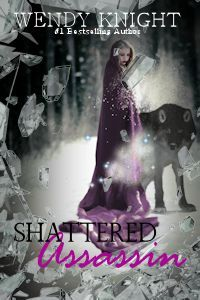 Shattered Assassin by Wendy  Knight