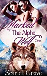 Marked By The Alpha Wolf; Part 1 (Braving Darkness #0.1)