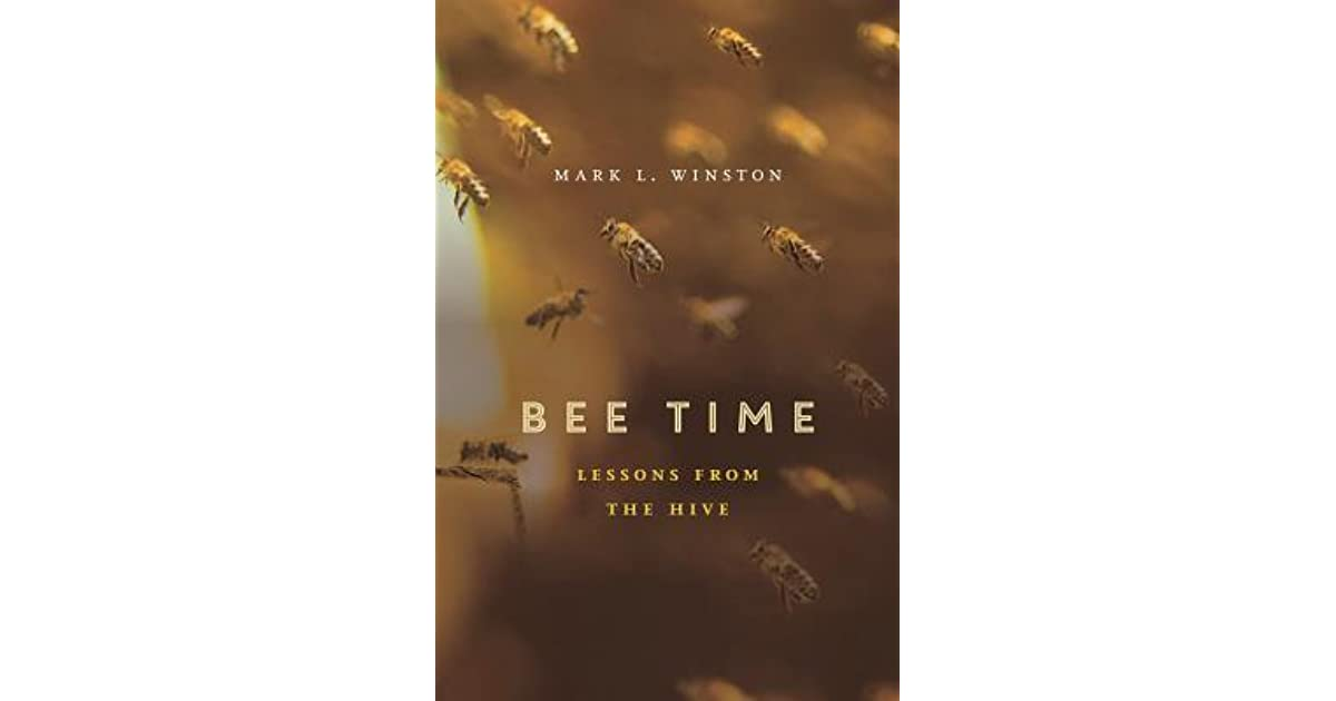Bee Time: Lessons from the Hive by Mark L  Winston