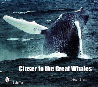 Closer to the Great Whales